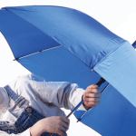 Education Outlook: Weathering the Storm