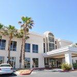Anthony M. Ricciardi Jr., Ltd. Inc agrees to lease of office property