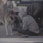 Pets of the Homeless Featured in Elite Daily's Documentary