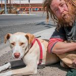 The National Feeding Pets of the Homeless Give a Dog a Bone, a non-profit organization, week returns for its eighth year, August 6-12, 2017