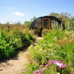Reno's Biggest Little Pollinator Garden Selected as RSAR's Build A Better Block Project Winner
