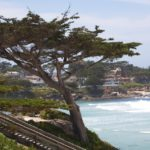 The Abbi Agency recently signed a partnership agreement with Visit Carmel, the destination marketing organization for Carmel-by- the-Sea.