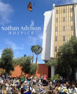 Nathan Adelson Hospice, Southern Nevada's largest non-profit hospice, announced the 15th Annual John Anderson 'Celebration of Life' Live Butterfly Release will take place on The Lawn at Downtown Summerlin at 2 p.m. Sunday, April 29.