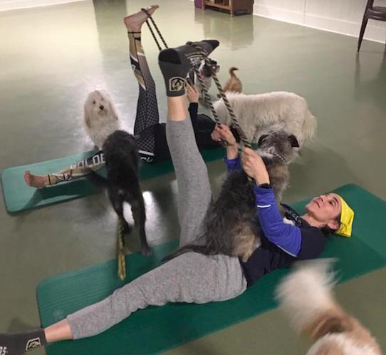 Hydrant Club Offers Downward Dog Yoga Classes Nevada Business Magazine