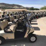 Reflection Bay_New Golf Carts 2019