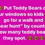 bear hunt post
